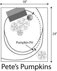 Pete's Pumpkins Plan