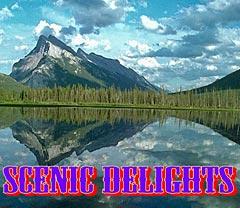 Scenic Delights